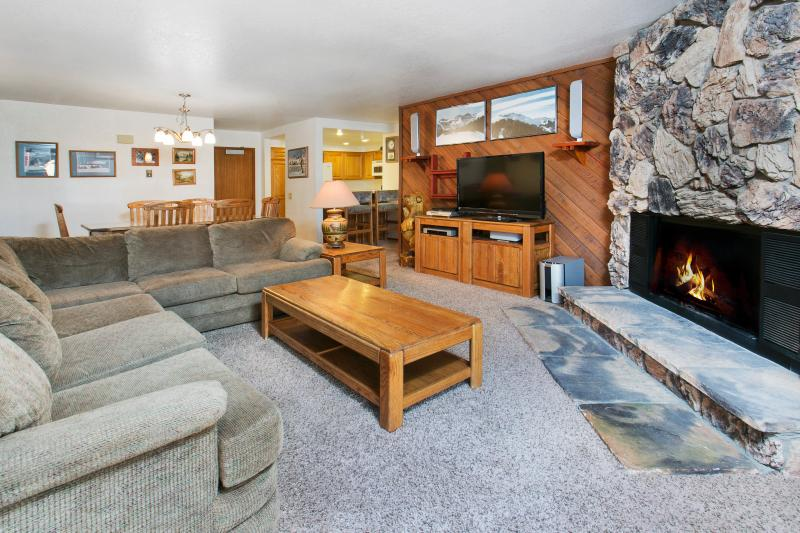 Aspen Creek #107 Living Area With A Wood Burning Fireplace And A Queen Sofa Bed