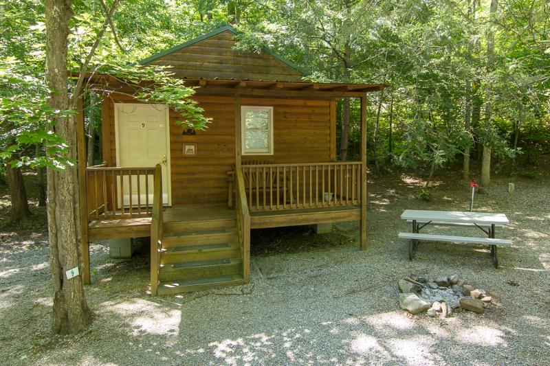 Wooded area with picnic table at site and firepit