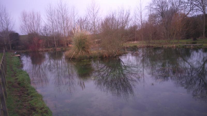 View of the Fishing Lake