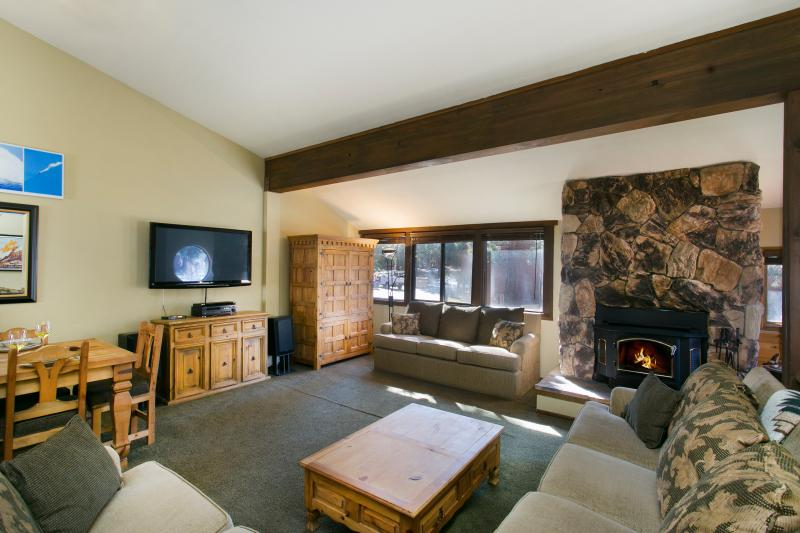 Helios South #3 Living Area With A Wood Burning Fireplace