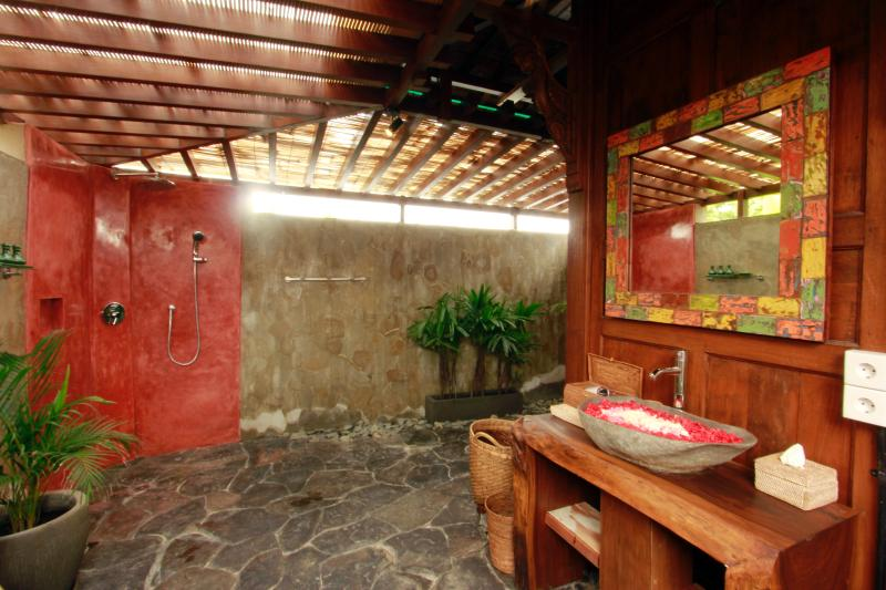 Red room bathroom with rain shower.