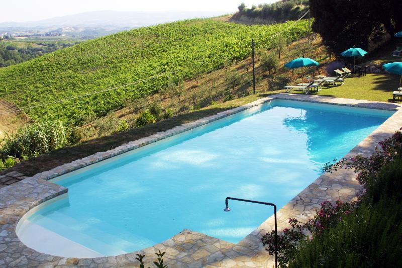 a piscina partilhada entre o olival e a vinha