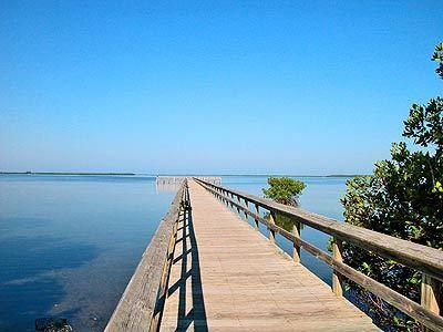 Paradise found on Terra Ceia Bay with a private fishing pier and mangrove walkway