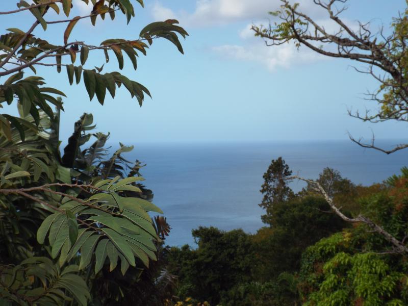 la mer des Caraïbes chaque matin depuis la galerie
