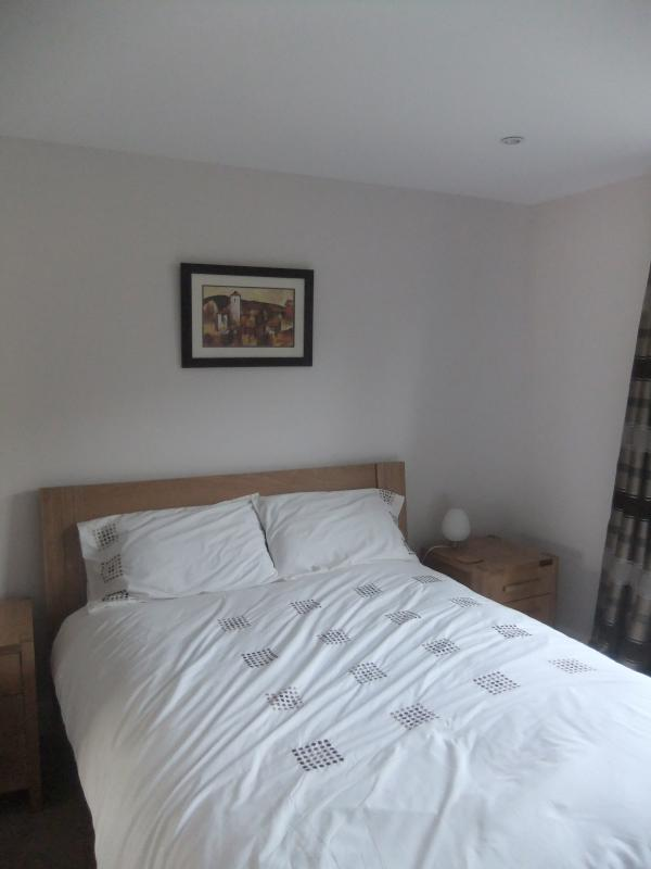 Modern bedroom with en-suite shower room