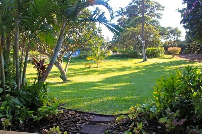 view from the lanai looking out to the pool