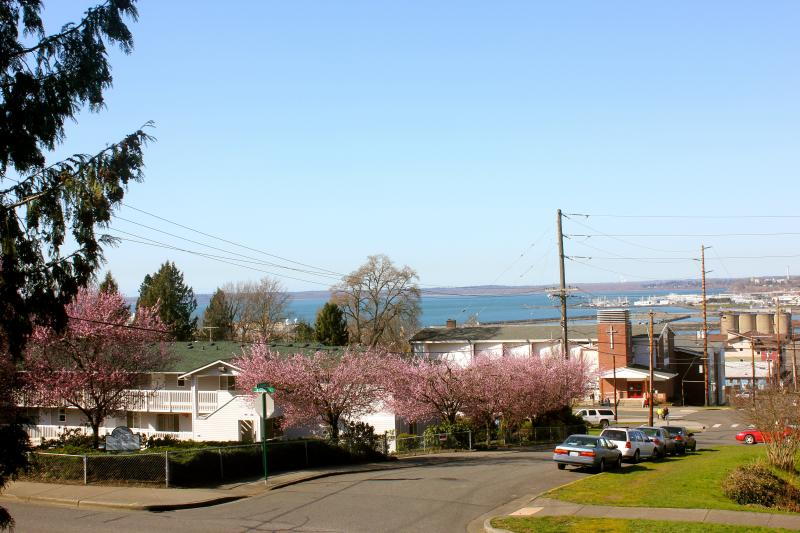 Bay view from the front patio. Downtown is just to the right, Fairhaven to the left, the university