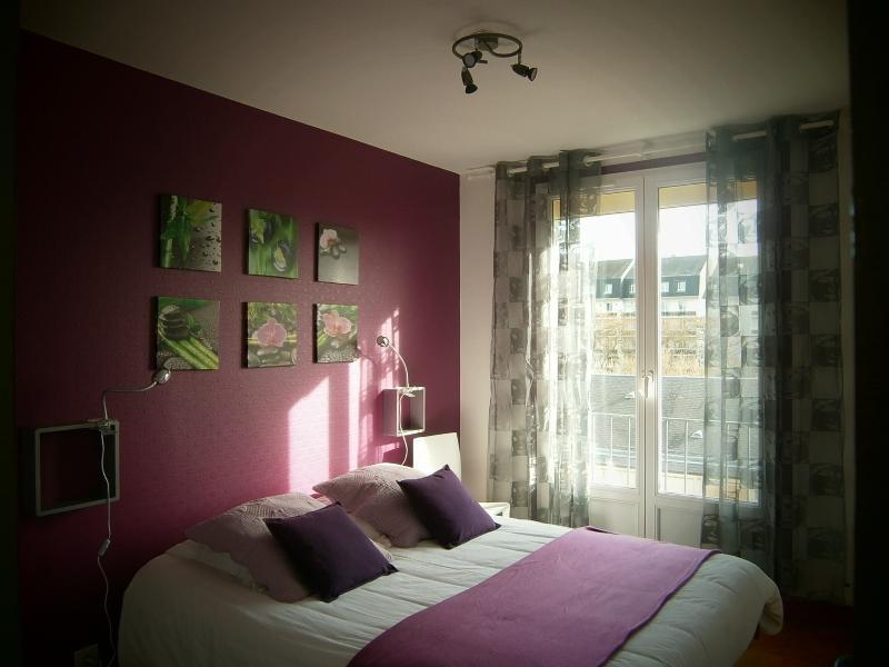 Appartement vue sur la Basilique St Rémi - Reims - appartement
