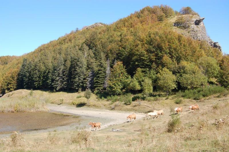 Pratignana Lake Parco del Frignano