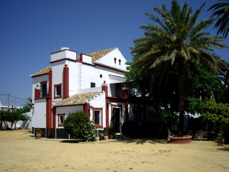 HACIENDA DE GRACIA ( SIGLO XIX) Tipycal Seville, holiday rental in Los Palacios y Villafranca