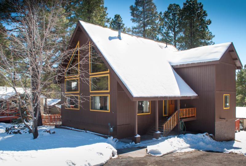 The cabin the winter