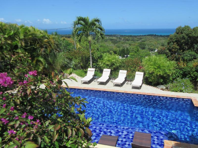 The pool is surrounded by lush, mature gardens, which afford total privacy