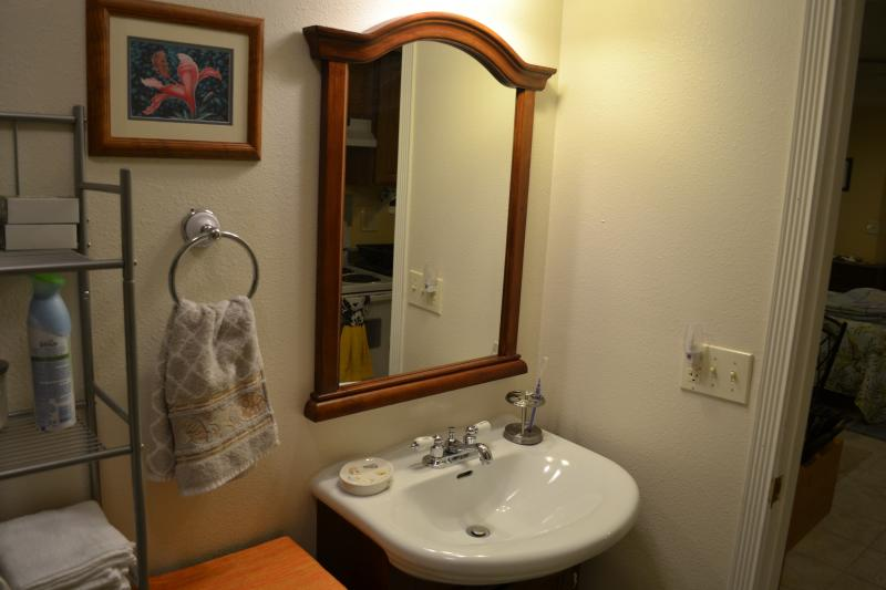 Bath sink and mirror.