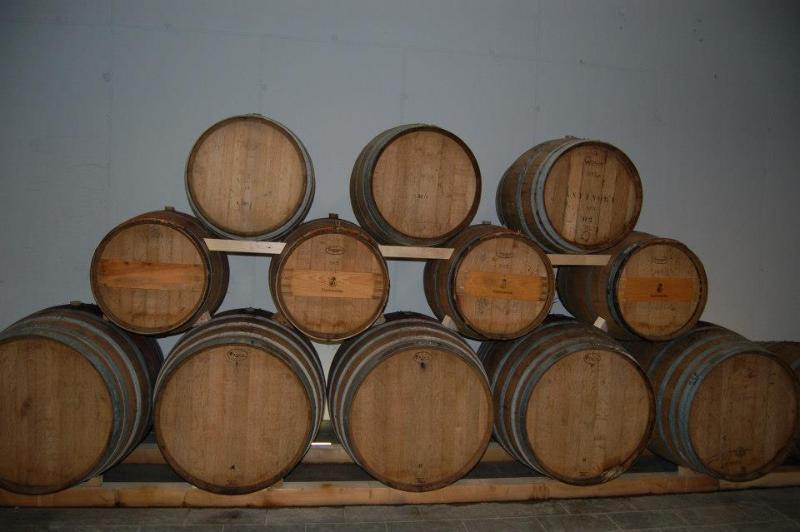 Artisananal wine & Traditional Balsamic Vinegar