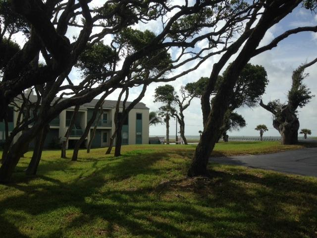 The condo sits beautifully between Aransas Bay and windswept live oaks. Awesome views!