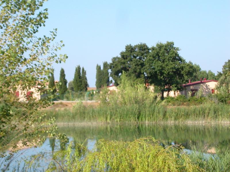 view of the apartments from the neighbour's lake