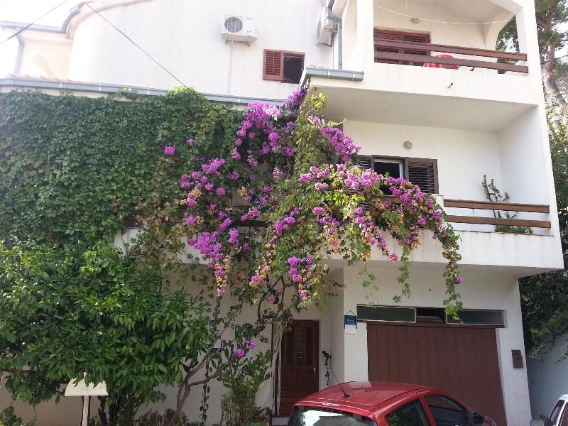 Zvone - 50 M from the sea :  A4 prizemlje (2+2) - Sumpetar, holiday rental in Sumpetar