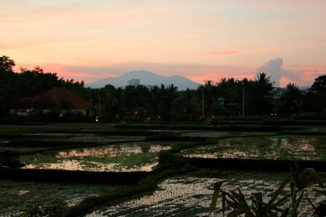 Genesteld achter een traditionele Balinees dorp in de rijstvelden buiten Ubud... Zonsondergangen dagelijks.