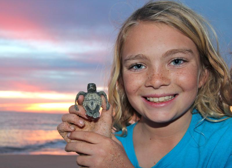 Turtle releases are less than a mile away.