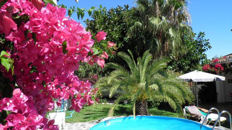 Ferienhaus Costa del Sol, Marbella, mit Meerblick & Pool, 500m zum Strand, vacation rental in Marbella