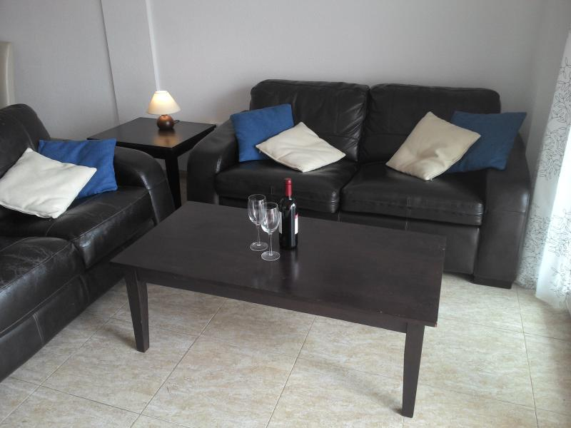 comfortable leather sofa and sofabad