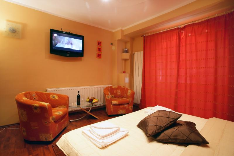 Superb Studio - Cismigiu Gardens - Room
