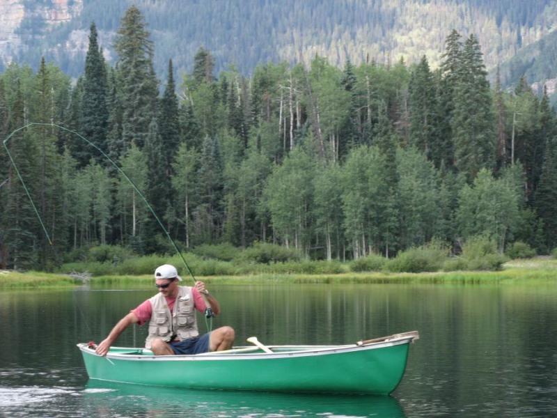 Pinecone-lake