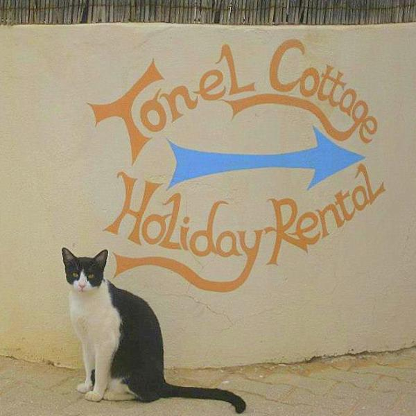 Welcome to Tonel cottage!