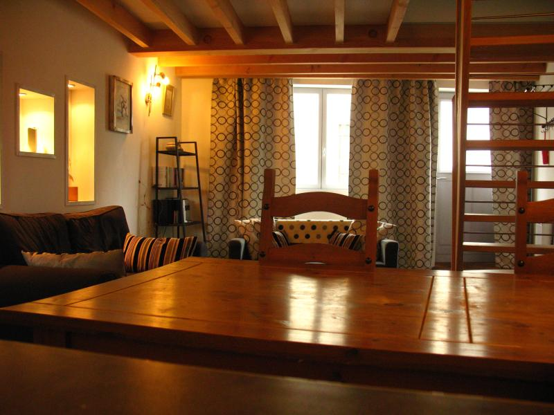 beautiful village gite - half an hour Carcassonne, holiday rental in Villelongue-d'Aude