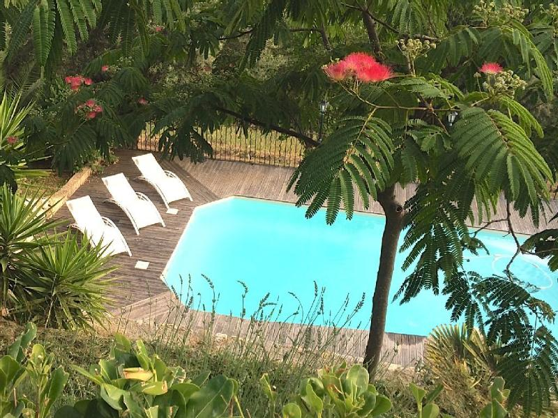 Les Oliviers des Aspras, holiday rental in Coursegoules