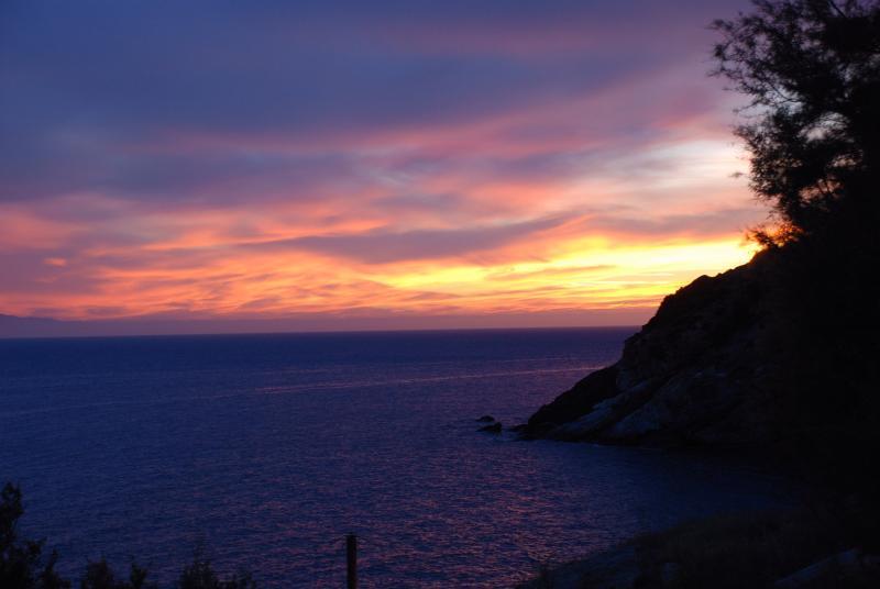 puesta de sol vista desde el jardín