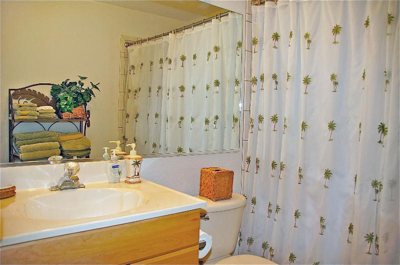 HALL BATH has huge walk in shower