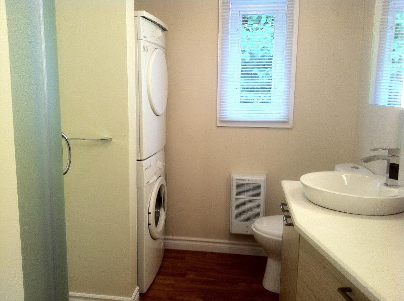 Bathroom with shower. Washing machine. Just renovated.
