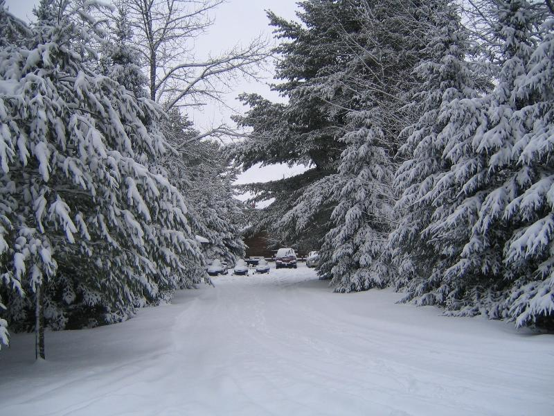 Park your sleds right at the door!