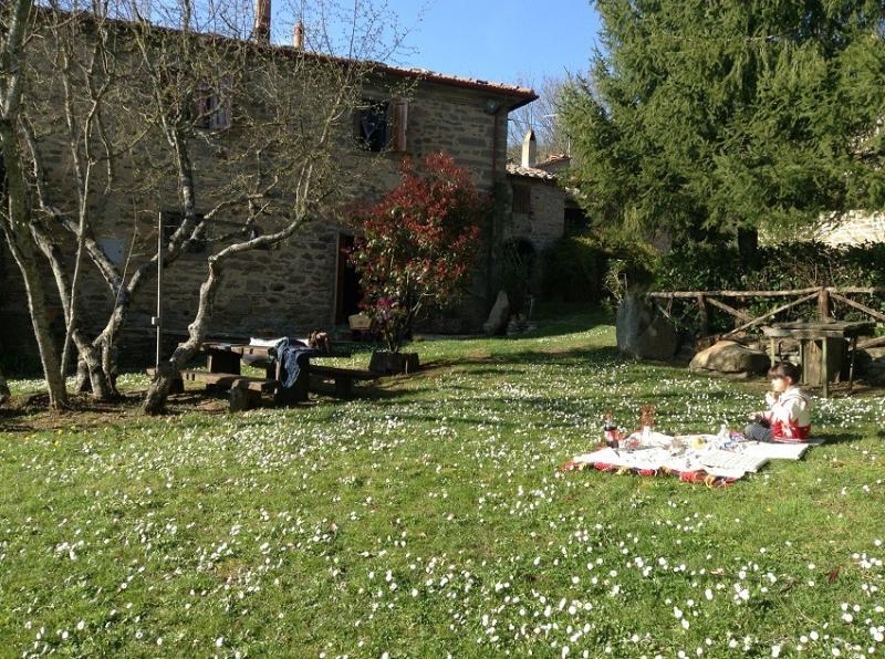 Casa Anna,  cosy holiday apartment Cortona, alquiler de vacaciones en Cortona