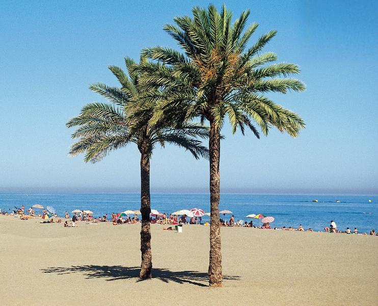 Vista Africa, Estepona, holiday rental in Estepona