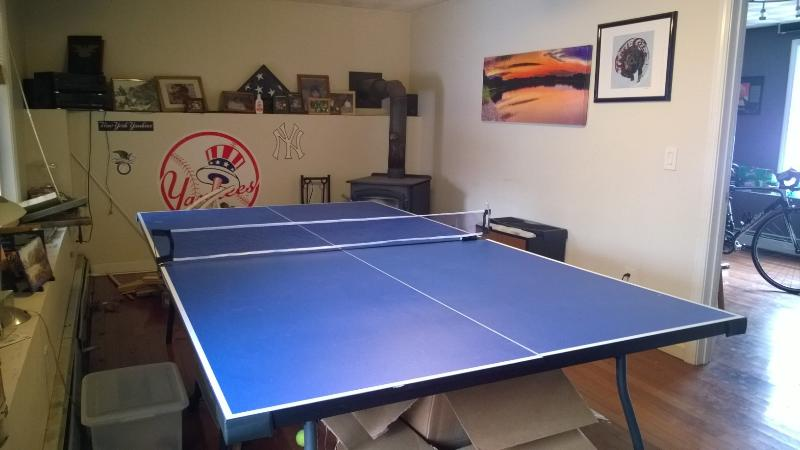 downstairs living room with ping pong table