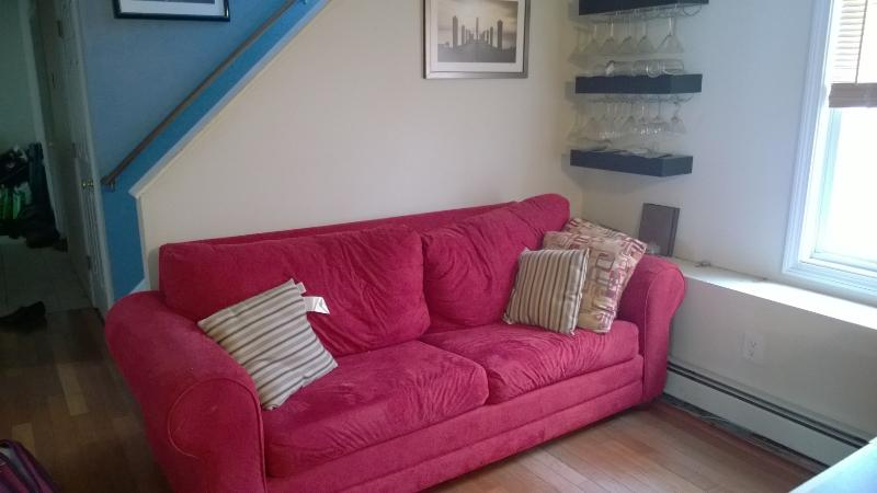 full pullout sofa downstairs