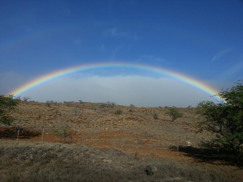 A Rainbow in Paradise! Mahalo, and come visit us!!!