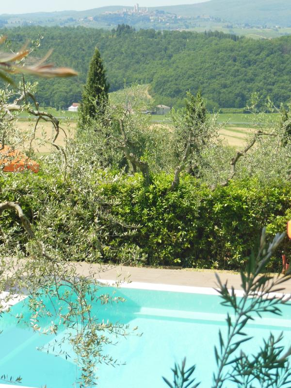OUR SWIMMING POOL WITH VIEW ON SAN GIMIGNANO