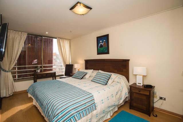 Comfortable apt in Providencia, holiday rental in Santiago