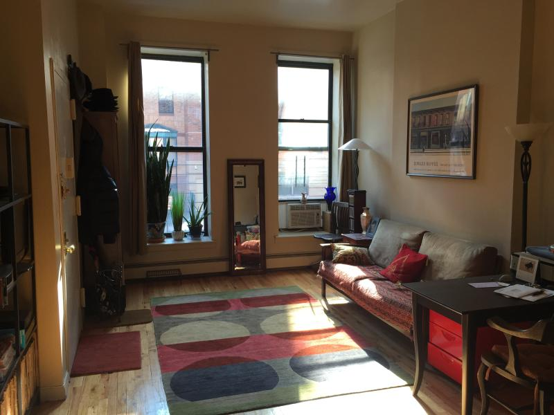 Beautiful Full Sunny Apartment in Harlem New York, holiday rental in New York City