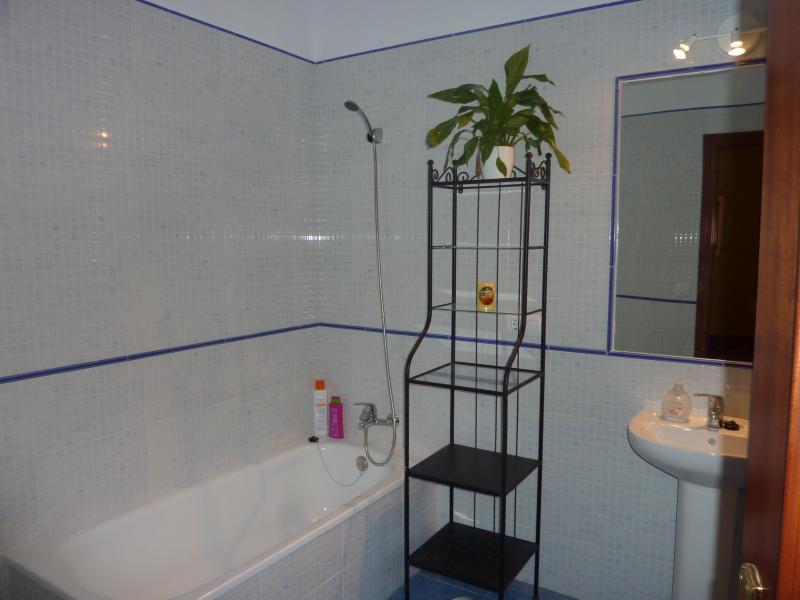The master bath tub
