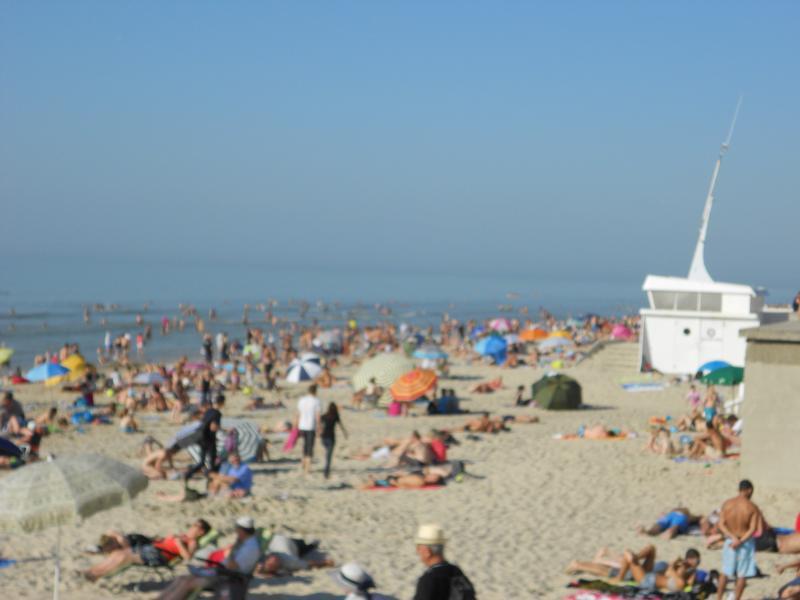 Stella beach in summer