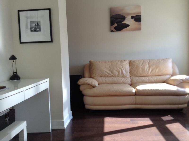 Extra large Dan with a big window and door. ~100 SF. Leather sofa with orthopaedic mattress
