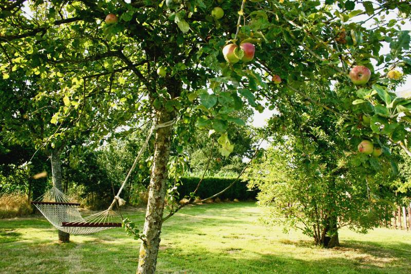 Lie back in the gite orchard