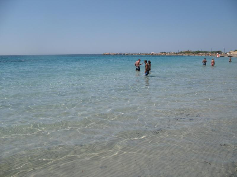 Mare di Torrazza
