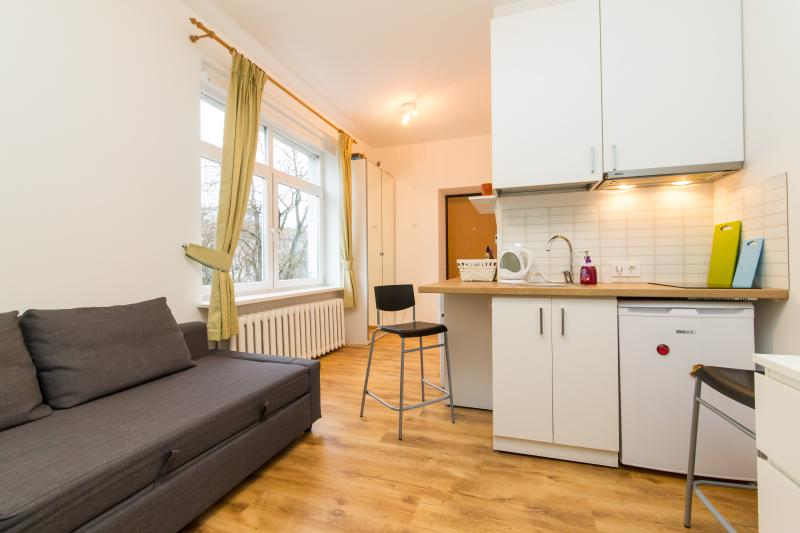 Vilnius center apartment, Junior studio apartment, vacation rental in Vilnius