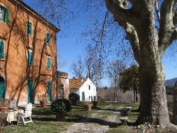 Antica Villa Padronale chiamata Villa Mori o Fattoria Montevaso costruita agli inizi '800.