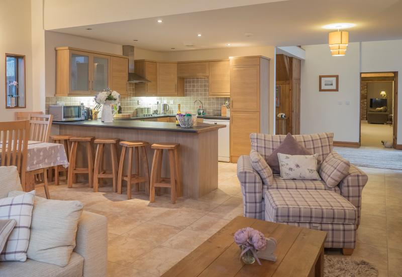 Large Open Plan Living Space, Kitchen and Dining Room